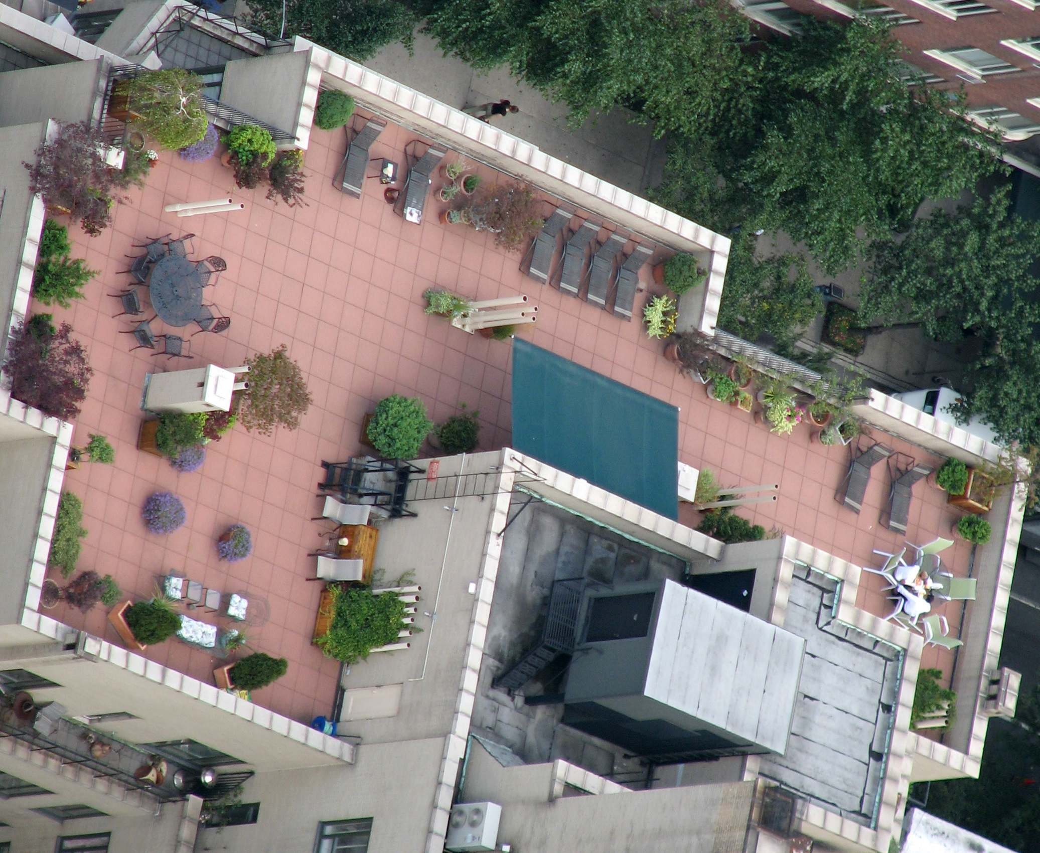 Roof Top Gardens Arenu0027t Just For Luxury Apartments In Brooklyn NY